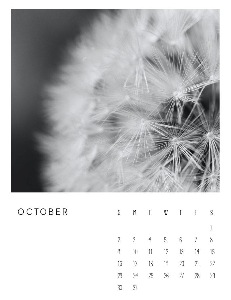 photo calendar 2022 - October