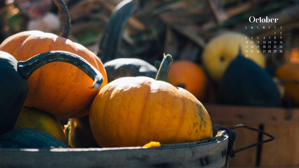 Pumpkins October 2021 wallpaper calendars – Download free October Wallpaper desktop backgrounds