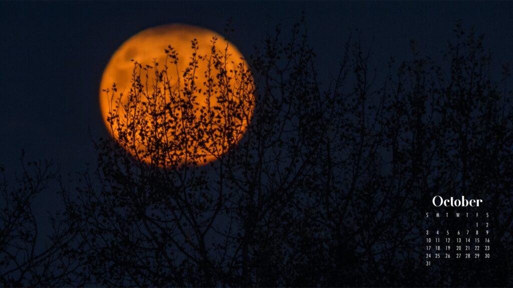 Moon night October wallpaper calendar