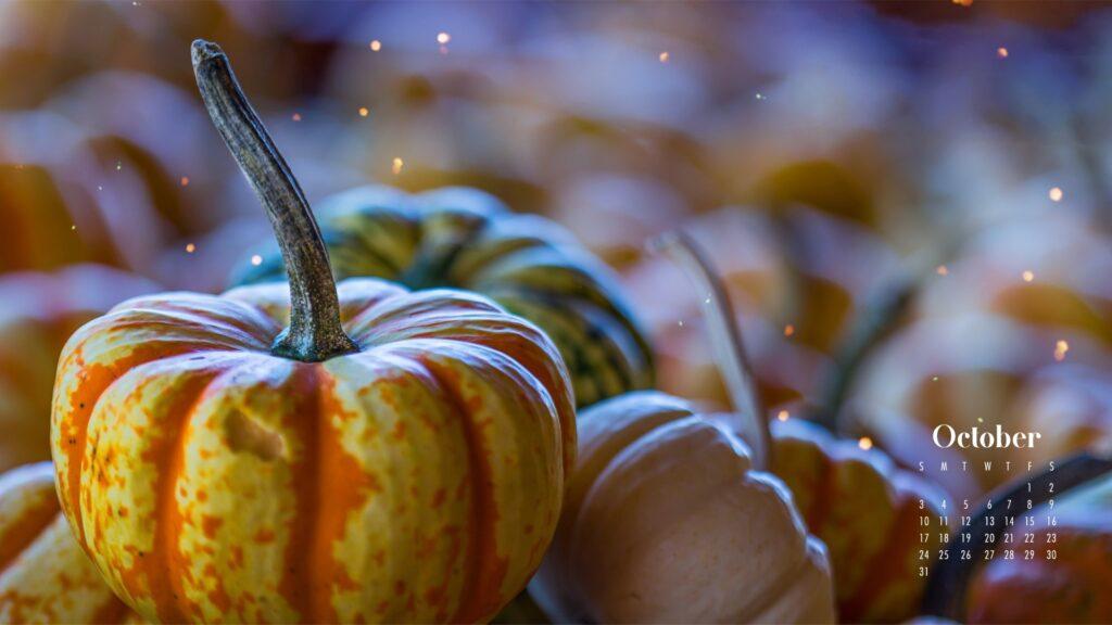 October 2021 wallpaper calendars with pumpkins – Download free October Wallpaper desktop backgrounds