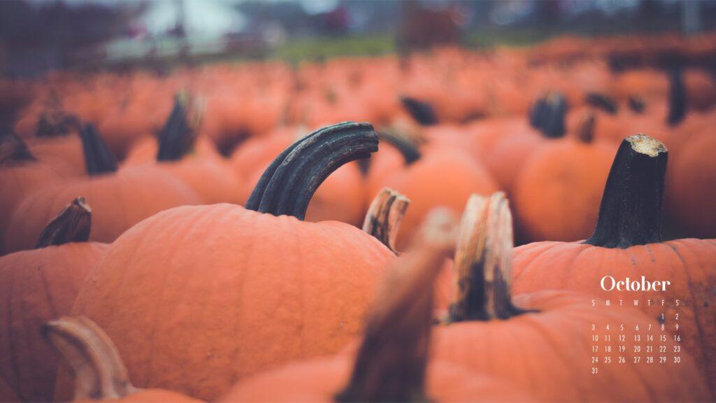 Pumpkin patch October 2021 wallpaper calendars
