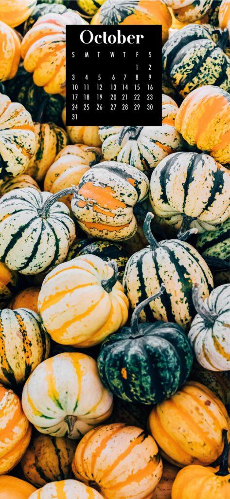 Pumpkin patch October phone wallpaper backgrounds