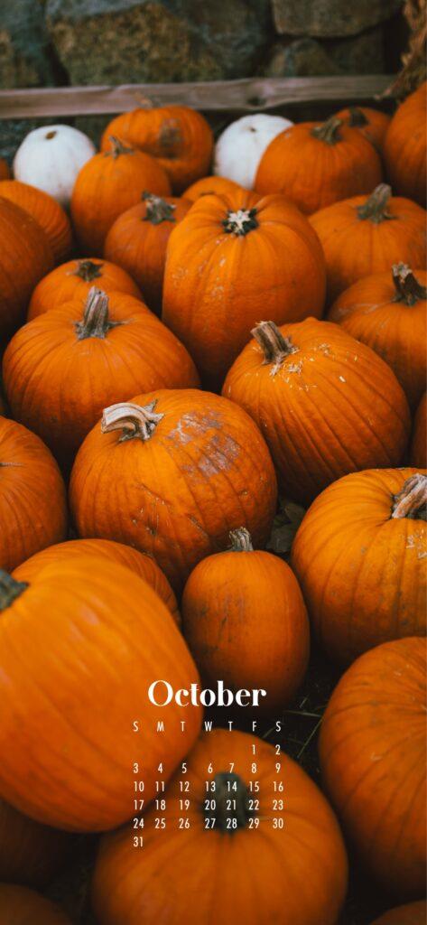 Fall pumpkins October 2021 wallpaper calendars – Download free October phone background wallpaper