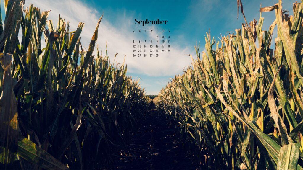 September 2021 wallpaper calendars – Download free July Wallpaper desktop backgrounds