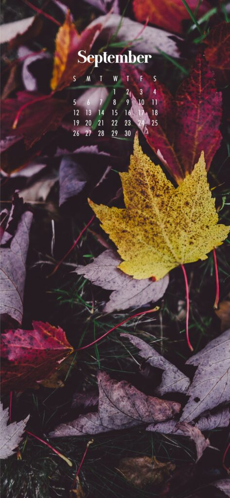 September 2021 wallpaper calendars – Download free July phone background wallpaper