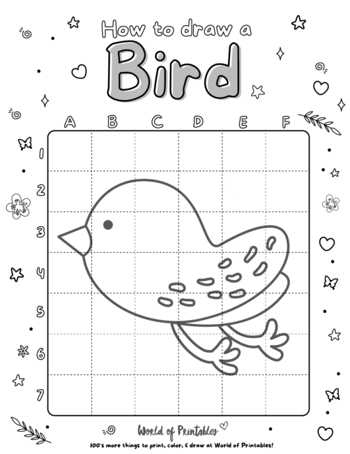 How To Draw A Bird 2