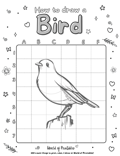 How To Draw A Bird 3