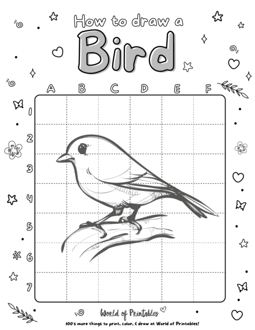 How To Draw A Bird 4