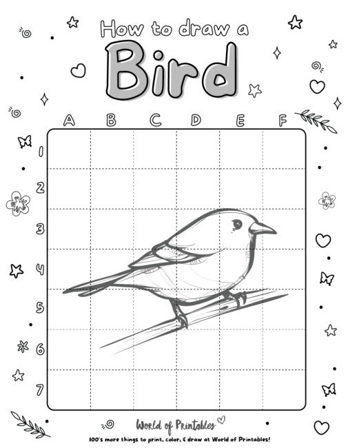 How To Draw A Bird 5