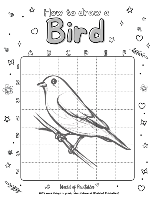 How To Draw A Bird 6