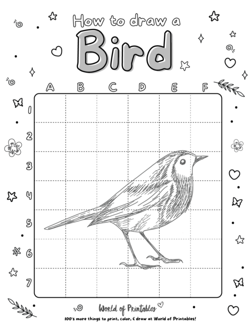 How To Draw A Bird 7