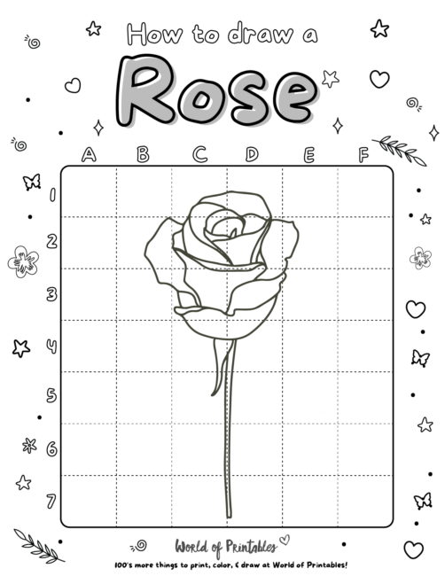 How To Draw a Rose 3