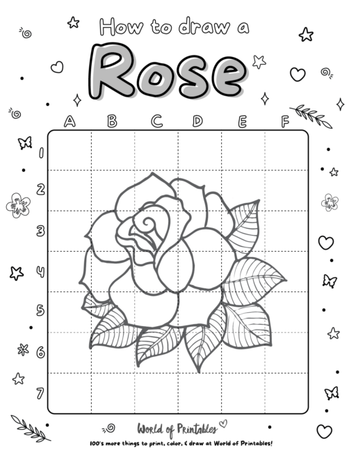 How To Draw a Rose 4