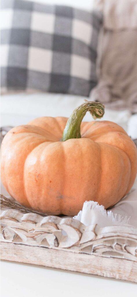 Cute Fall Wallpaper Pumpkin