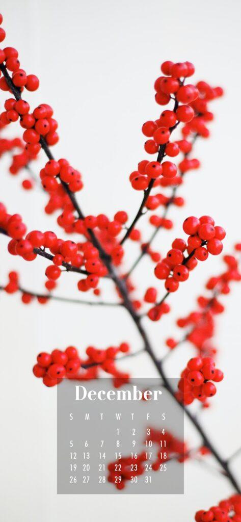 December 2021 Calendar Phone Aesthetic Wallpaper Red Berries
