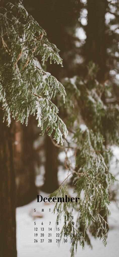 December 2021 Calendar Phone Aesthetic Wallpaper Snow Forest Aesthetic