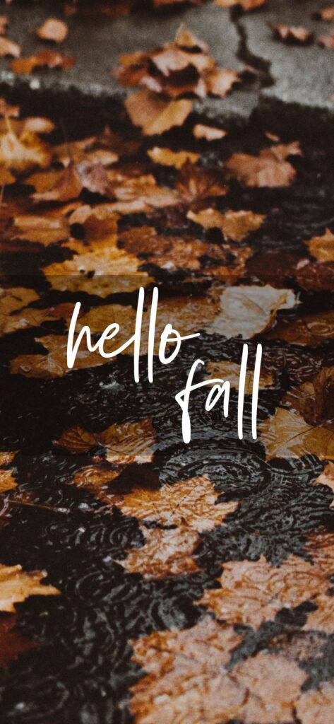 Hello Fall Aesthetic Fall Wallpaper