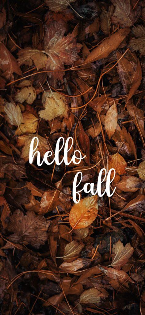Hello Fall Autumn Background