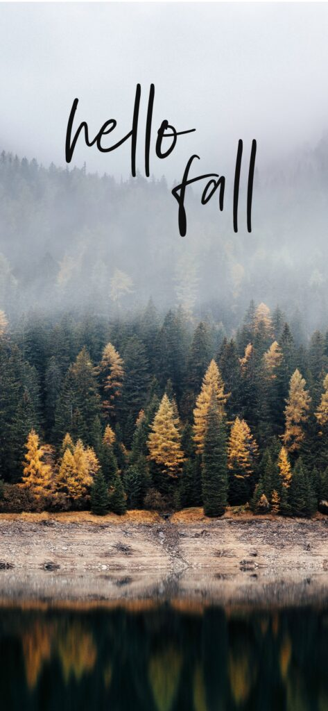 Hello Fall Forest Fall Wallpaper iPhone