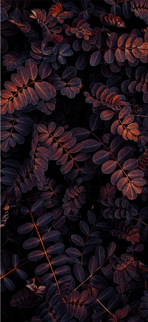 Leaves Fall Background