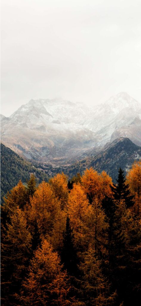 Mountains Fall Background