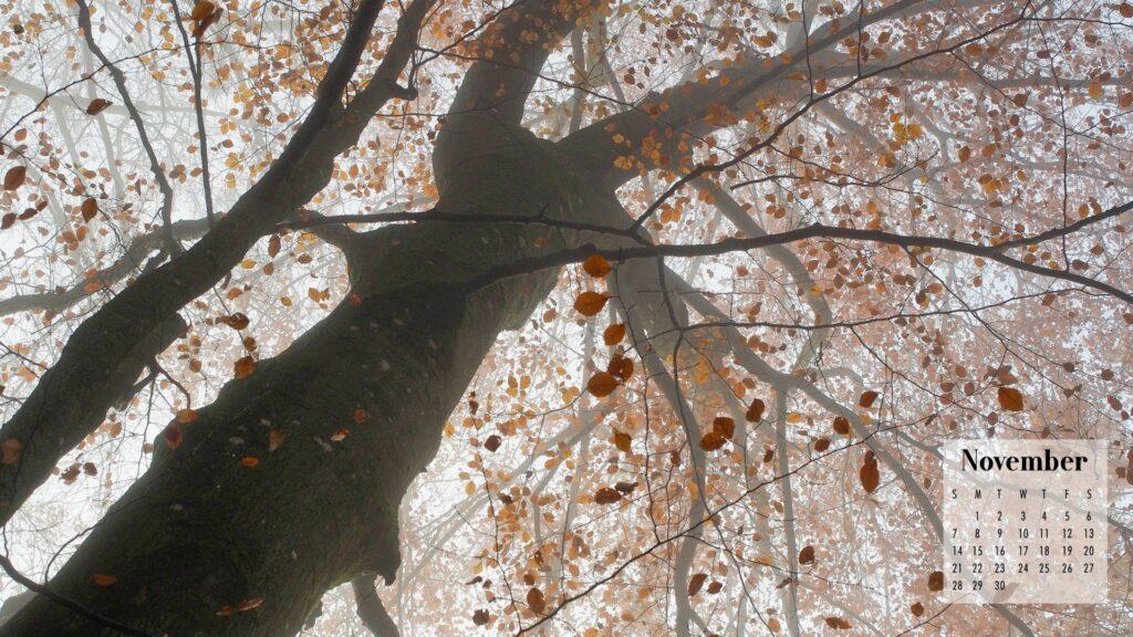 November 2021 Calendar Wallpaper Falling Leaves