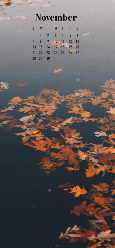 November Calendar Phone Wallpaper Floating Leaves