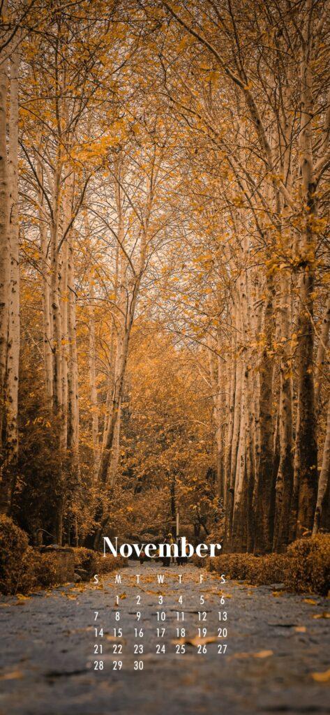 November Calendar Phone Wallpaper Golden Woodland