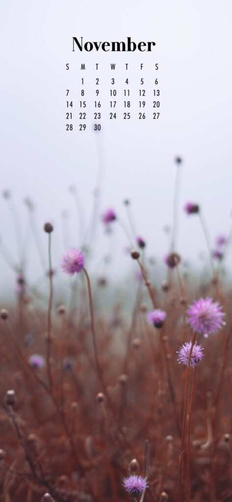 November Calendar Phone Wallpaper Purple Flowers