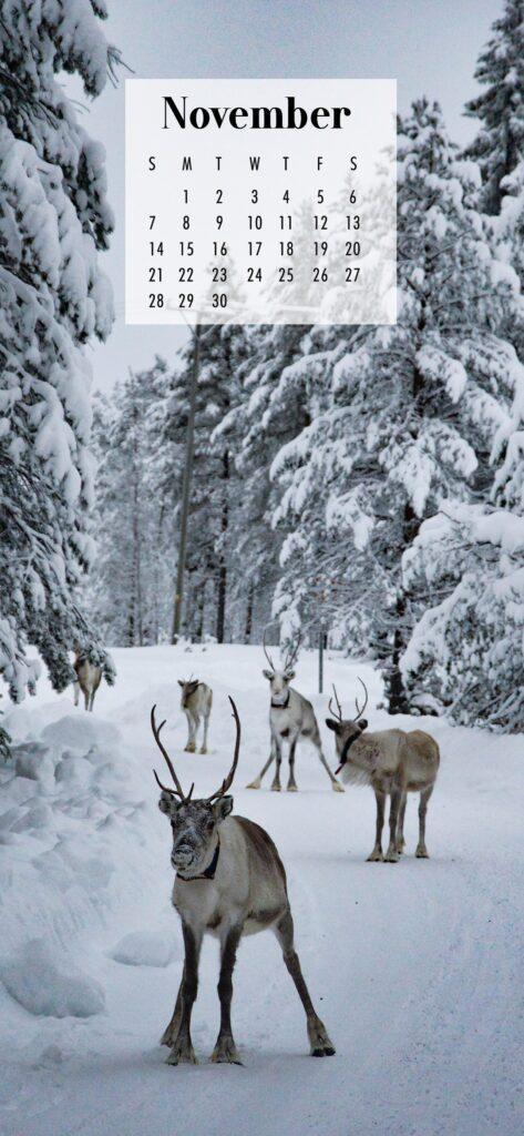 November Calendar Phone Wallpaper Reindeer in The Snow