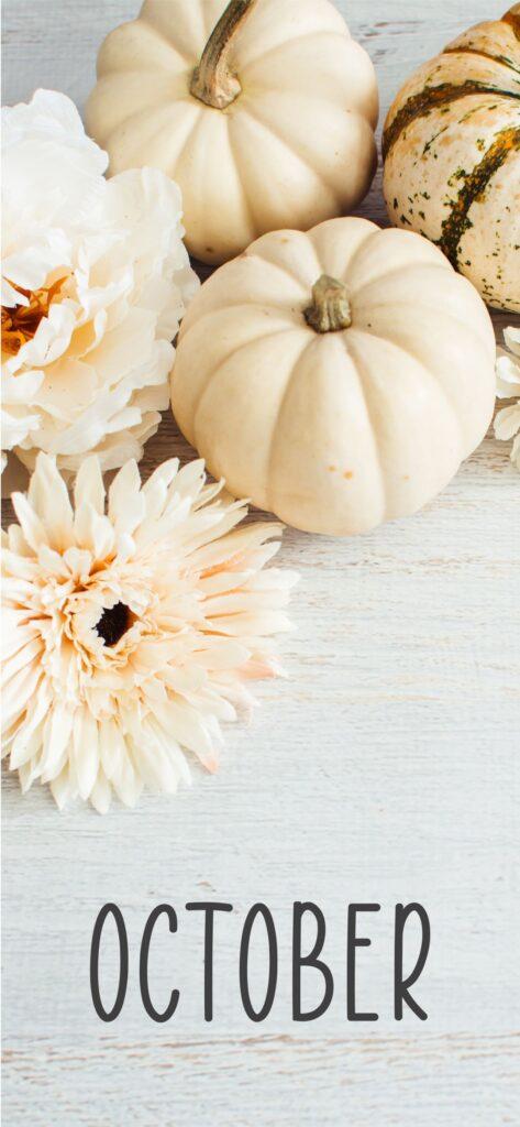 October Cute Fall Wallpaper