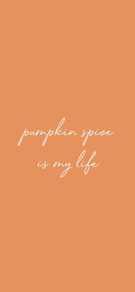 Pumpkin Spice Cute Fall Background