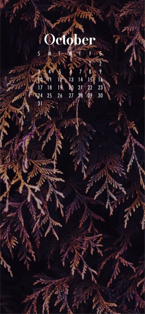 Branches October Calendar Wallpaper
