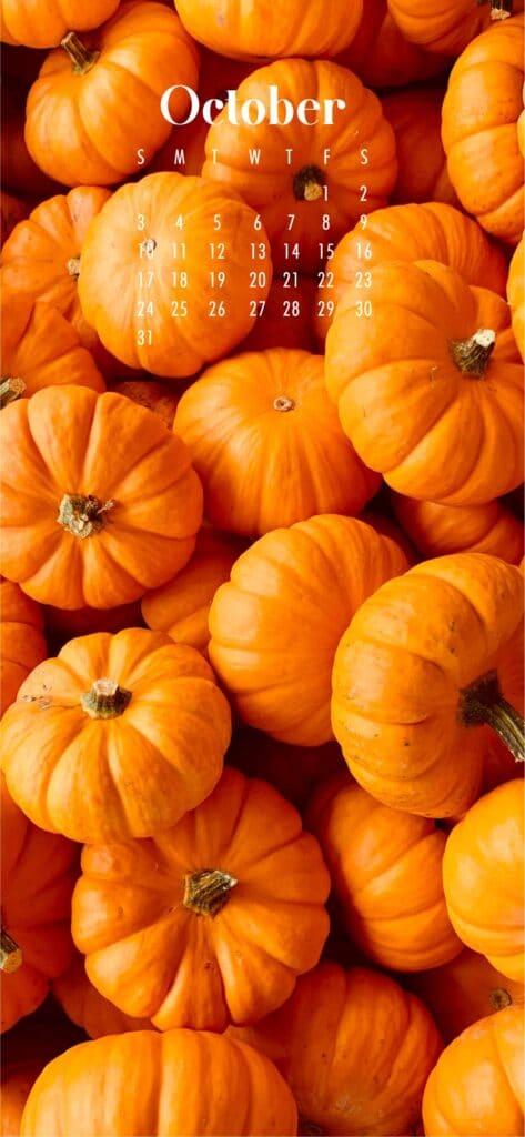 Fall Pumpkins October Calendar Wallpaper