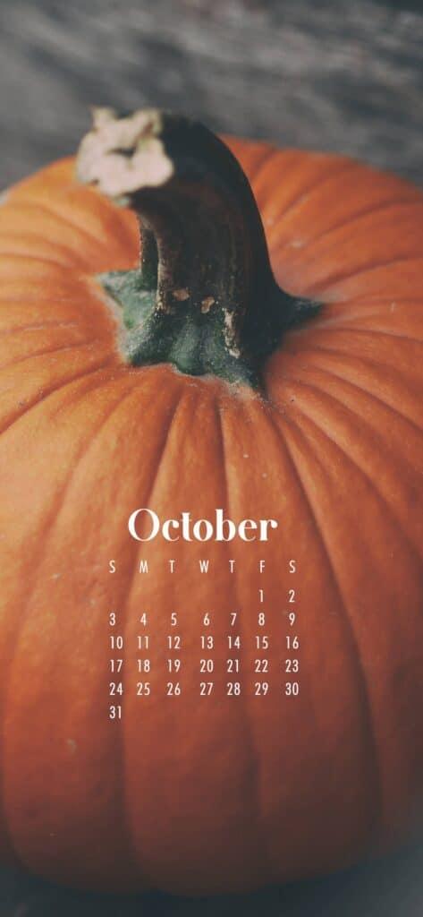 Pumpkin October Calendar Wallpaper
